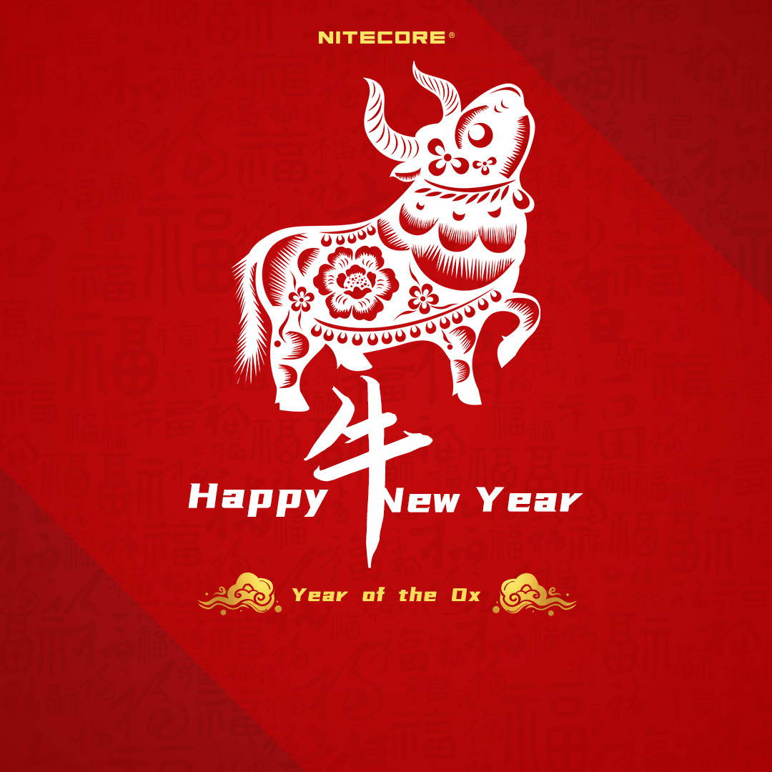 Happy Chinese New Year!🎉🎁